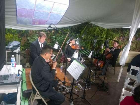 Violinistas profesionales benito juarez cdmx